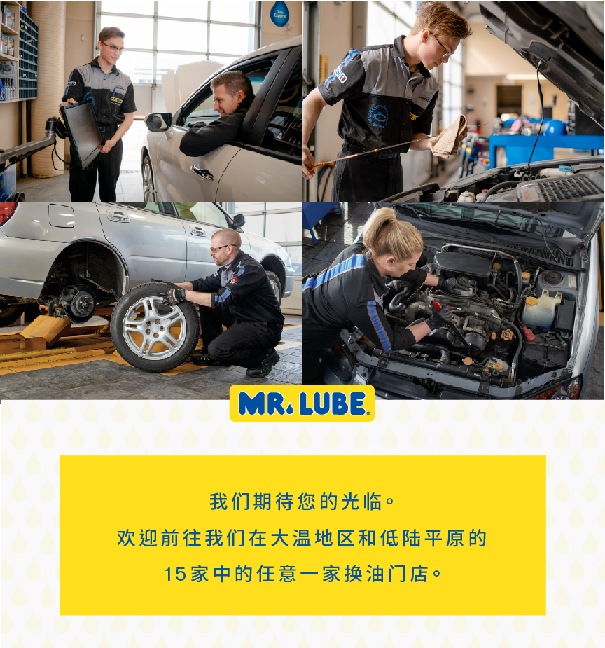 Mr Lube Chinese